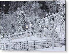 Winter Land Acrylic Print