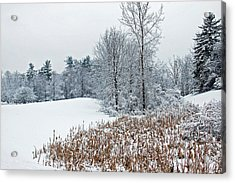 Winter Landscape Acrylic Print by Aimee L Maher Photography and Art Visit ALMGallerydotcom