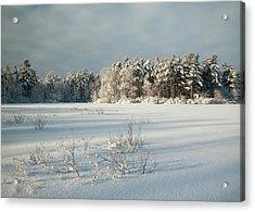 Winter Landscape At Mud Lake Ottawa Acrylic Print