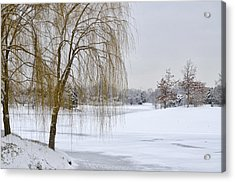 Winter Landscape Acrylic Print by Julie Palencia