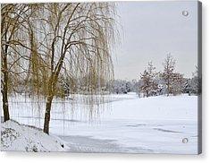Winter Landscape Acrylic Print by Julie Palencia