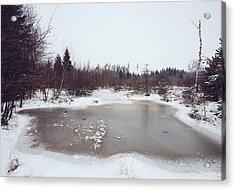 Winter Landscape With Trees And Frozen Pond Acrylic Print