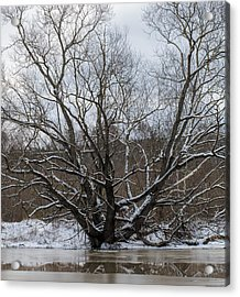 Acrylic Print featuring the photograph Winter  Leif Sohlman by Leif Sohlman