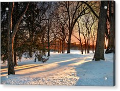 Acrylic Print featuring the photograph Winter Light by Robin-Lee Vieira