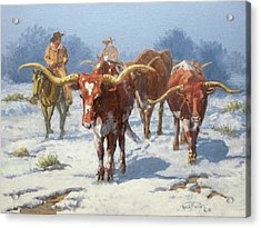 Winter Longhorns Acrylic Print by Randy Follis