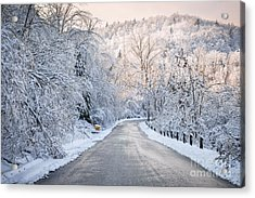 Winter Magic Acrylic Print by Elena Elisseeva