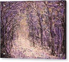 Winter Magic Acrylic Print by Natalie Holland