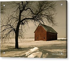 Winter Memory Acrylic Print by Tim Good