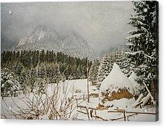 Winter Mood Acrylic Print by Cristina-Velina Ion