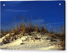 Acrylic Print featuring the photograph Winter Morning On The Dunes by Bill Swartwout