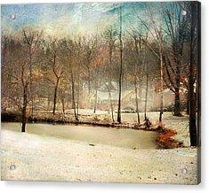 Winter Morning Pond Acrylic Print by Jai Johnson