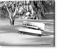 Winter Morning Acrylic Print by Susan  Dimitrakopoulos