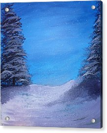 Winter Night Acrylic Print by Dan Haley