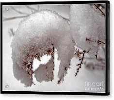 Winter On Aberdeen Acrylic Print