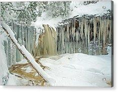 Winter On Carpenter Creek Acrylic Print