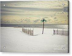 Winter Paradise Acrylic Print