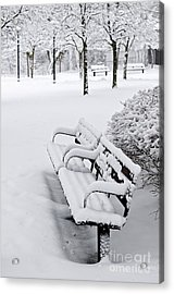 Winter Park With Benches Acrylic Print by Elena Elisseeva