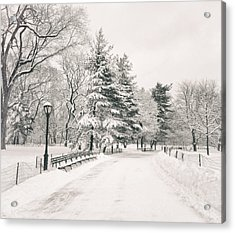 Winter Path - Snow Covered Trees In Central Park Acrylic Print by Vivienne Gucwa