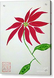 Winter Poinsettia Acrylic Print
