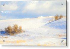 Winter Poplars Acrylic Print by Theresa Tahara
