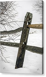 Winter Rail Fence Acrylic Print