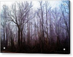 Winter Rain Acrylic Print by Melody McBride