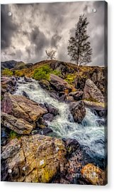 Winter Rapids Acrylic Print by Adrian Evans