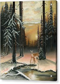 Winter Redwoods Acrylic Print by Cecilia Brendel