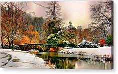 Winter Reflection Acrylic Print