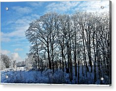 Winter Reflections Acrylic Print by Dawdy Imagery