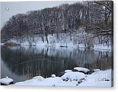 Acrylic Print featuring the photograph Winter Reflections by Dora Sofia Caputo Photographic Art and Design
