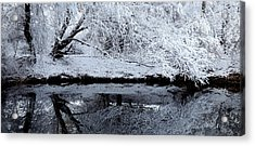 Winter Reflections Acrylic Print by Steven Milner
