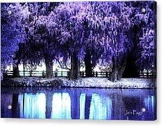 Winter Rest Acrylic Print
