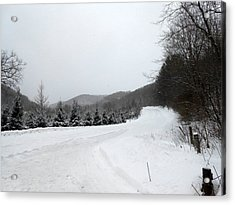 Winter Road Acrylic Print by Dina  Stillwell