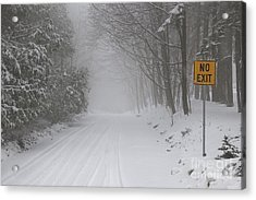 Winter Road During Snow Storm Acrylic Print by Elena Elisseeva