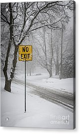Winter Road During Snowfall II Acrylic Print by Elena Elisseeva