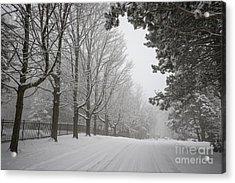 Winter Road Acrylic Print