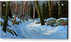 Winter Road Acrylic Print by Frank Wilson