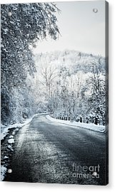 Winter Road In Forest Acrylic Print by Elena Elisseeva