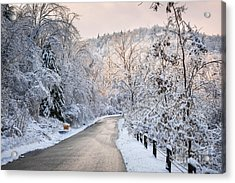 Winter Road In Snowy Forest Acrylic Print by Elena Elisseeva