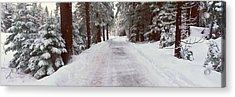 Winter Road Near Lake Tahoe, California Acrylic Print by Panoramic Images