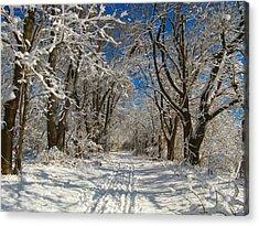 Winter Road Acrylic Print by Raymond Salani III