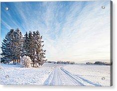 Winter Road Through Sweden Acrylic Print by Lkpgfoto