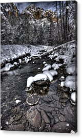 Winter Scene Acrylic Print by Bill Cantey