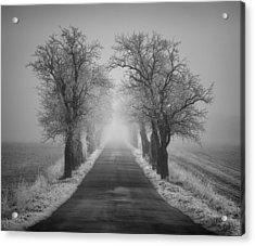 Winter Scene Acrylic Print by Jaromir Hron