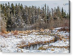 Winter Scene Maine  Acrylic Print