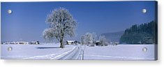 Winter Scenic, Austria Acrylic Print by Panoramic Images