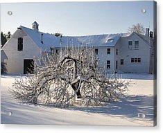Winter Sculpture Acrylic Print