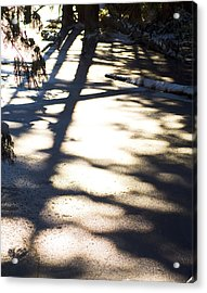 Acrylic Print featuring the photograph Winter Shadows by Yulia Kazansky