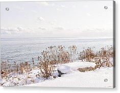 Winter Shore Of Lake Ontario Acrylic Print by Elena Elisseeva